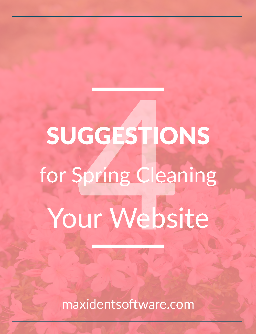 4 Suggestions for Spring Cleaning Your Website