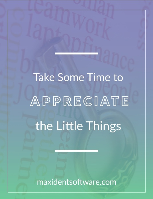 Take Some Time to Appreciate the Little Things